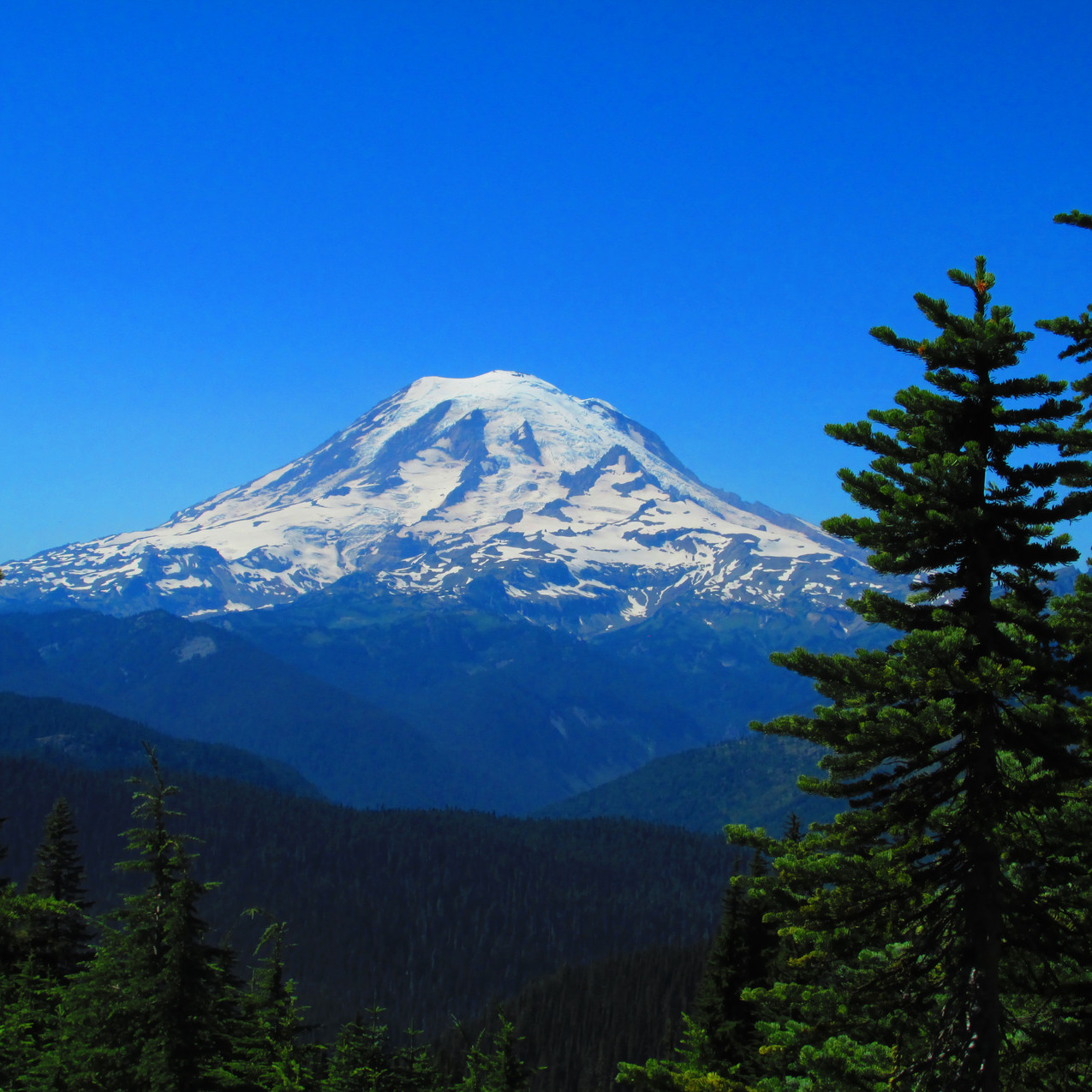 I was able to see the route Scott and I took on our failed attempt to climb Mt. Rainier earlier in the summer.