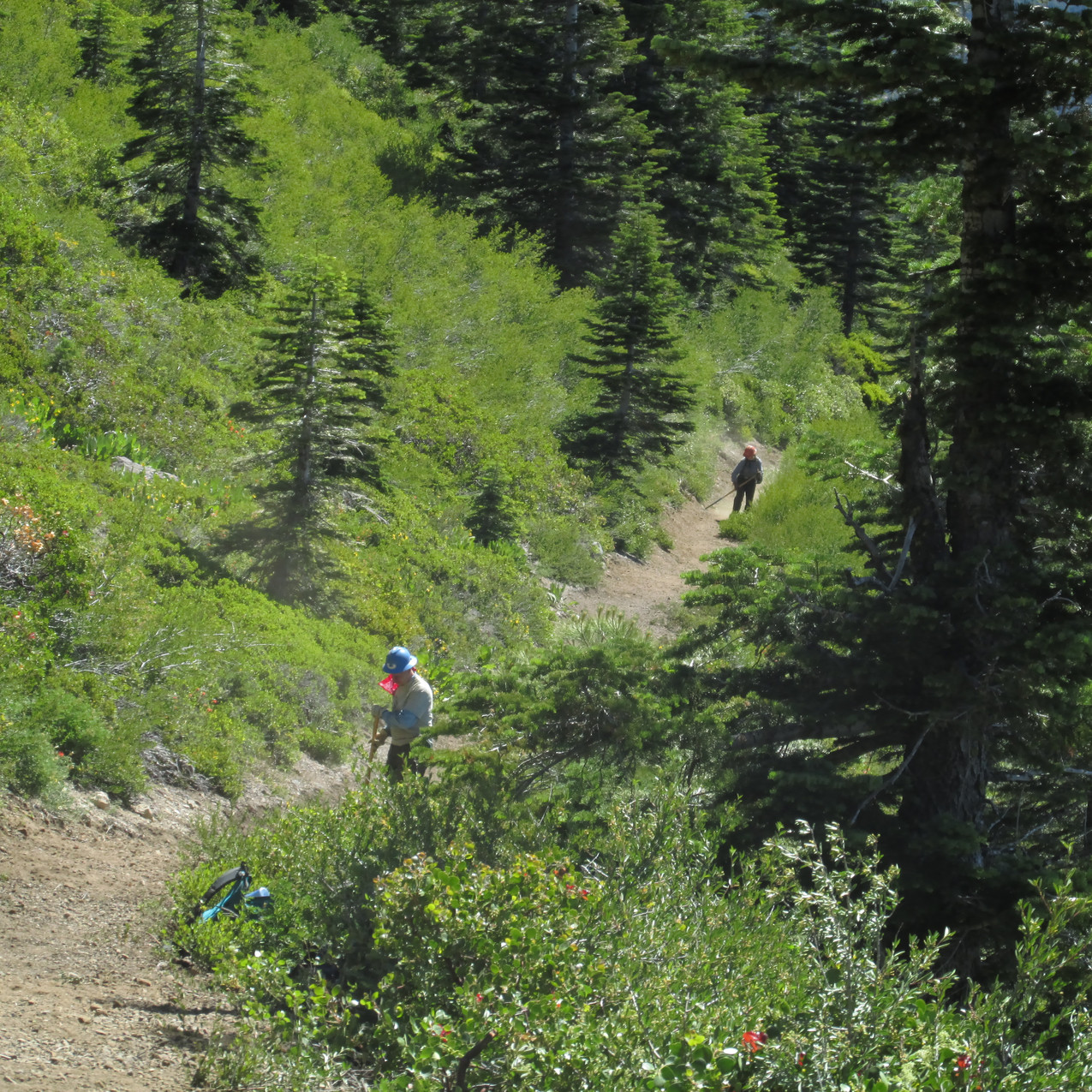 I appreciated the work trail crews did on the PCT.  The work is volunteer and made the lives of PCT hikers a lot easier.