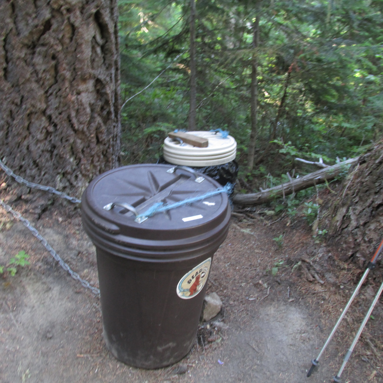 """The brown garbage can is filled with food for PCT hikers.  Since I was low on food, I filled up here.  I also got to talk with the Old Coyotes 255.  I mentioned that I wanted to be like them at their age (64 on average for the four of them) and they responded, """"Oh, you will be.  You've already started.  It's like an illness...an addiction!""""  What a wonderful way to spend fifteen minutes."""