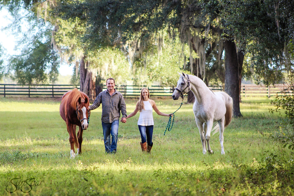 Engagement shoot with horses