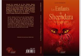 """Illustration pour le livre """"Les enfants de Sheendara"""""""