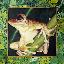 grenouille03.png