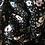 Thumbnail: Popeline de coton noire petites fleurs beige/bleu