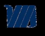VAAS Professionals Logo