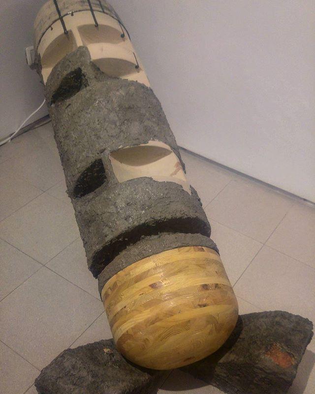 עבודה של אנתוני סטלאצ'יו_את העץ אני עשית