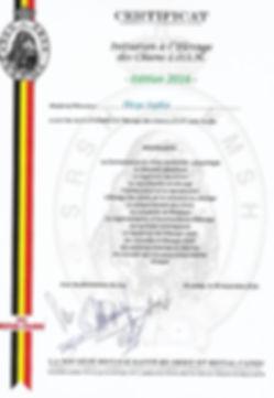 Certificat initiation à l'élevage des chiens L.OS.H. Theys Sophie, Elevage de Dalmatien