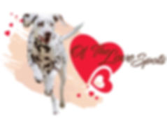 Logo Elevage Dalmatien Of The Love Spots