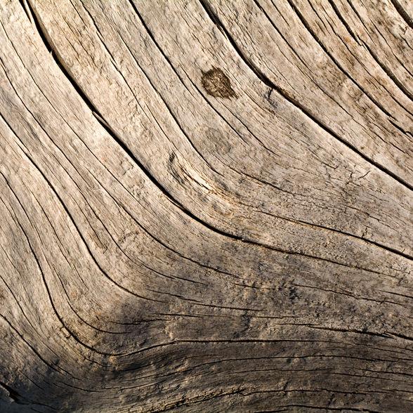 La base della lavorazione, quindi il legno è una scelta fondamentale. La fase di stagionatura dei tagli di legno scelti può durare, a seconda del momento in cui il legno è stato trovato, da due / tre mesi a diversi anni  The basis of the process, therefore wood is a fundamental choice. The seasoning phase of the chosen wood cuts can last, depending on the time when the wood was found, from two / three months to several years