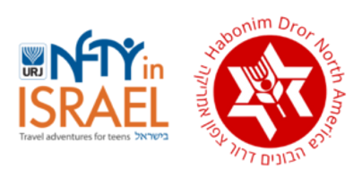 NFTY-in-Israel-HDNA-Logo-300x147.png
