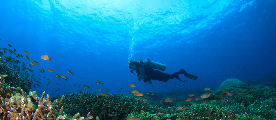 Turks & Caicos: A Deep Dive into Paradise
