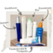 Shampoo-2.png