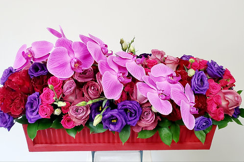 Flower Box Dream