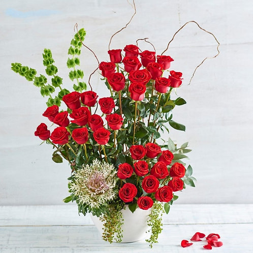 Red Roses Beauty