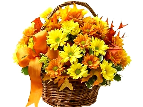 The Fall Basket
