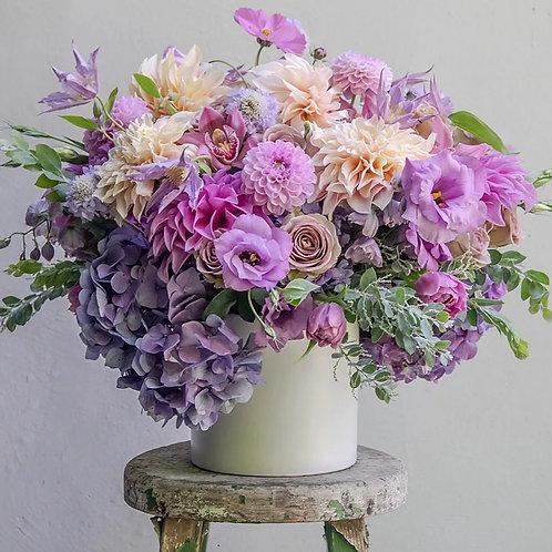 Lavender & You
