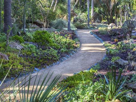 Virtual Visit to Lotusland