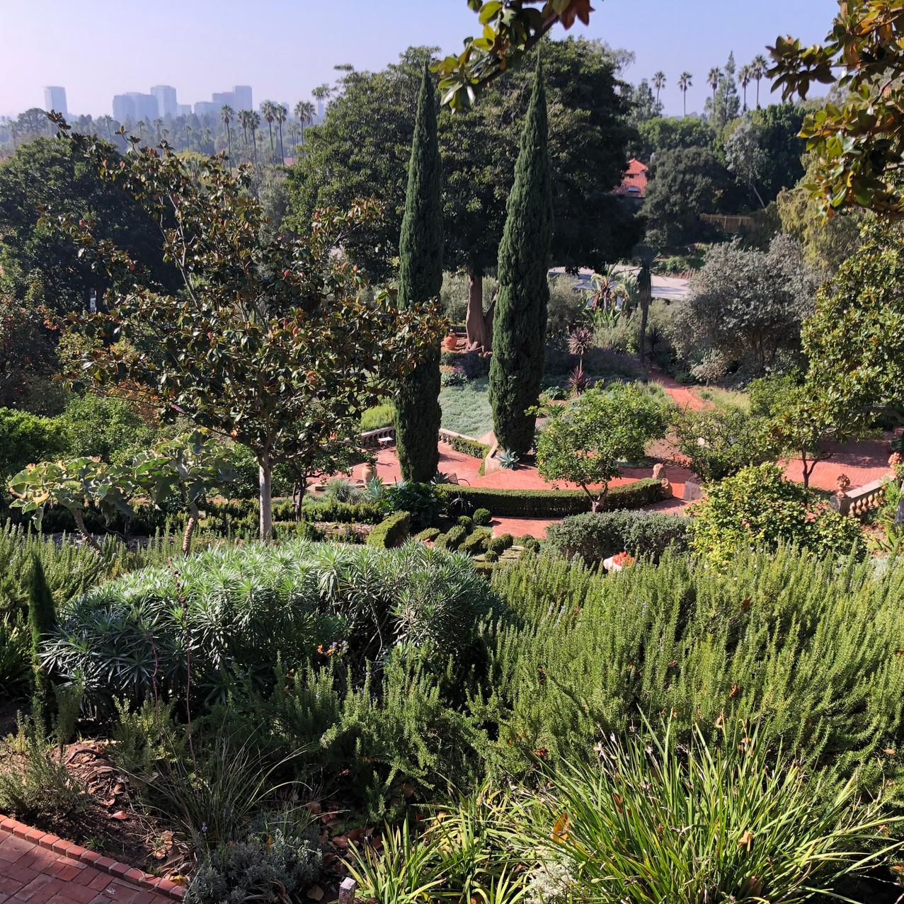 Robinson Gardens Oct 2018 - 5