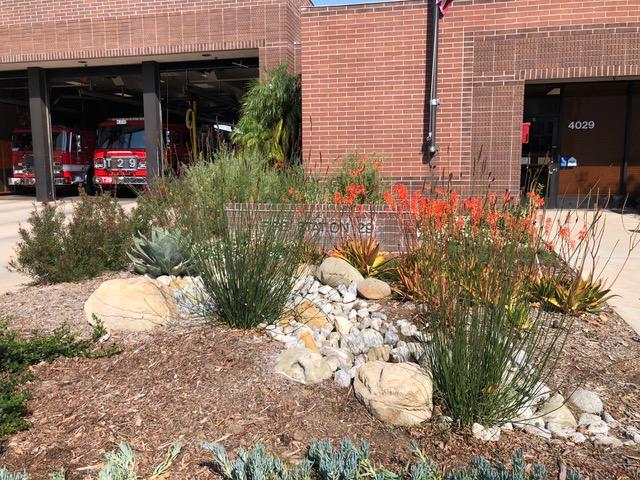 Fire Station Landscape
