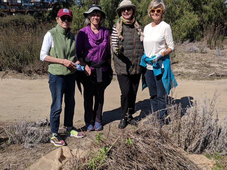 Conservation Crew in the Ballona Wetlands