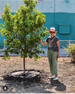 Watts Unity Garden