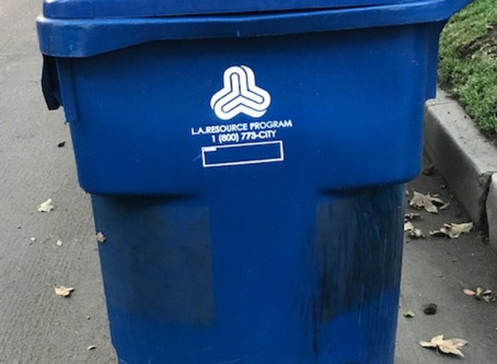 What Goes in the Blue Bin?  (It's complicated!)