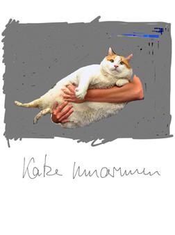 Katze umarmen