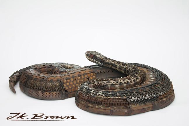 European Viper (Adder) - Customer Review