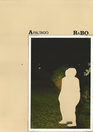 página 03 - A falta do rabo, 2007