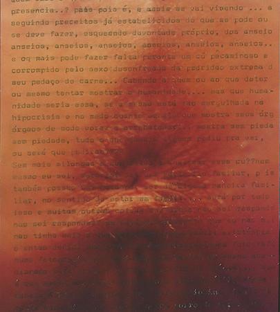 página 02 - Ânus, cu, rabo, rego, cofre, 2007