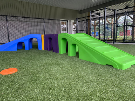 Our Outdoor Daycare K9 Playground!
