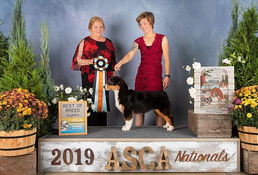 Nova BOBP ASCA Nationals 2019