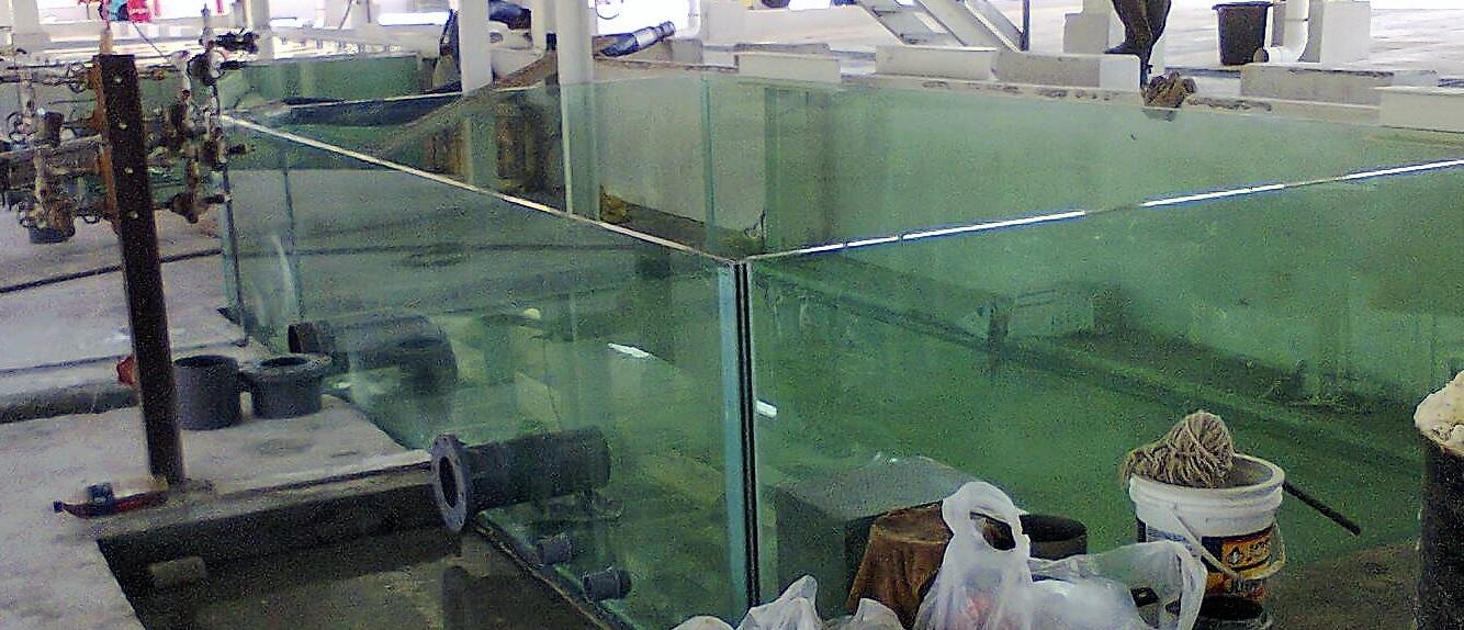 12 ton tank 5 wip2