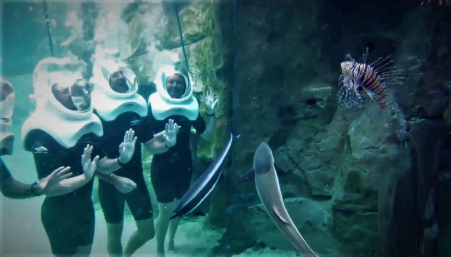 Under Water Adventure.png