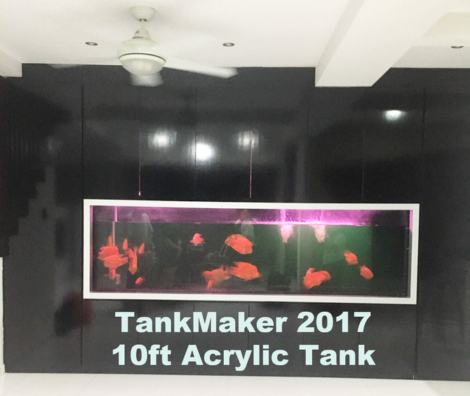 10ft Acrylic Tank supplied