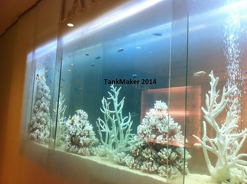 3.6 meter /12 ft Acrylic Aquarium (Plug & Play Coral Setup)