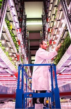 Vertical Farming.jpg