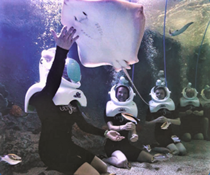 Under Water Adventure2.png