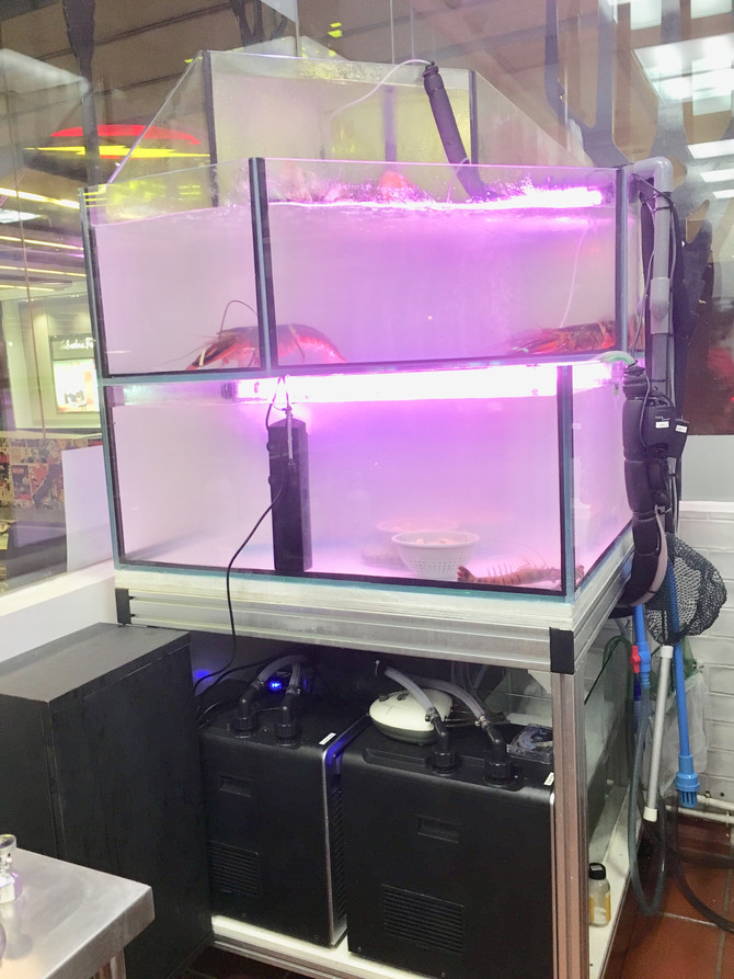 1 m tank with 3 system!