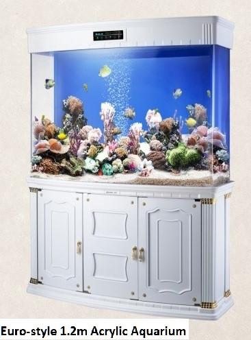 Aquarium for Rent