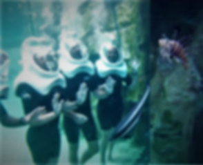 Under Water Helmet.png