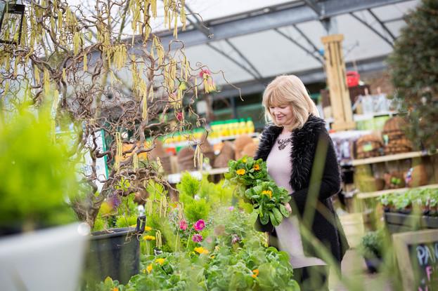 7-4-16-TRENTHAM-Garden-Centre-79.jpg