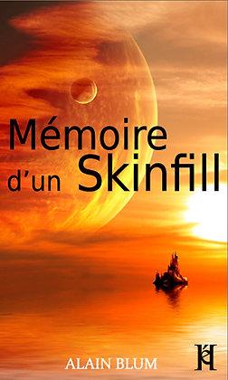 MÉMOIRE D'UN SKINFILL