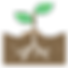 003-plant.png
