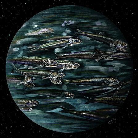 Blue Planet 1
