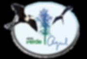 logo Verde Azul.png