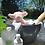 Thumbnail: Hammie the Pig