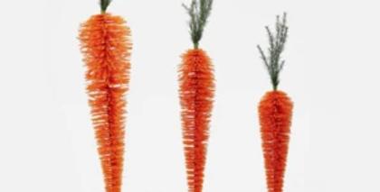 Standing Carrot Display