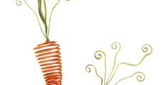 Springy Carrots (Set of 2)