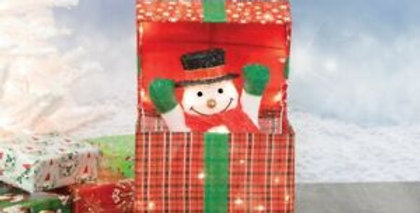 Frosty Gift Box