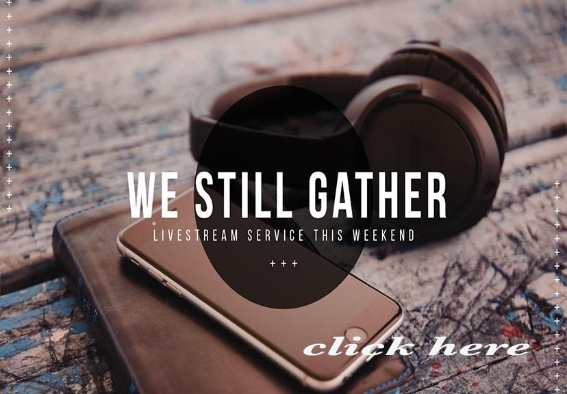 livestream web